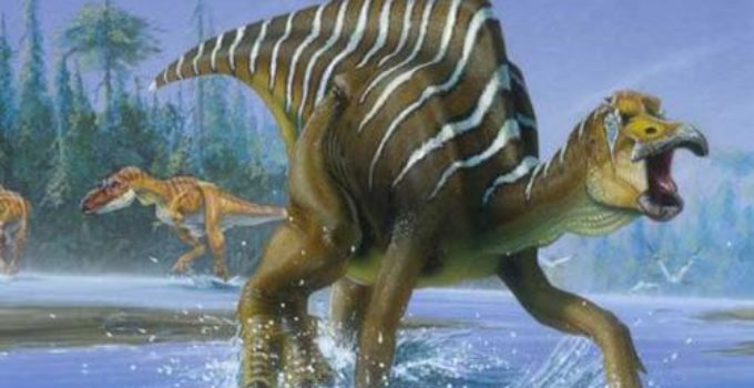 dinizaaur
